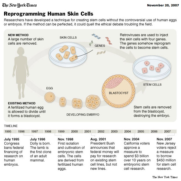 stalemate human embryonic stem cell research American stem cell research politics and policies by kirstin matthews, phd overview in february of 1997, dr ian wilmut announced the creation of the first cloned mammal the report, published in the science journal nature, described a lamb, dolly, which was cloned using somatic cell nuclear transfer (scnt.