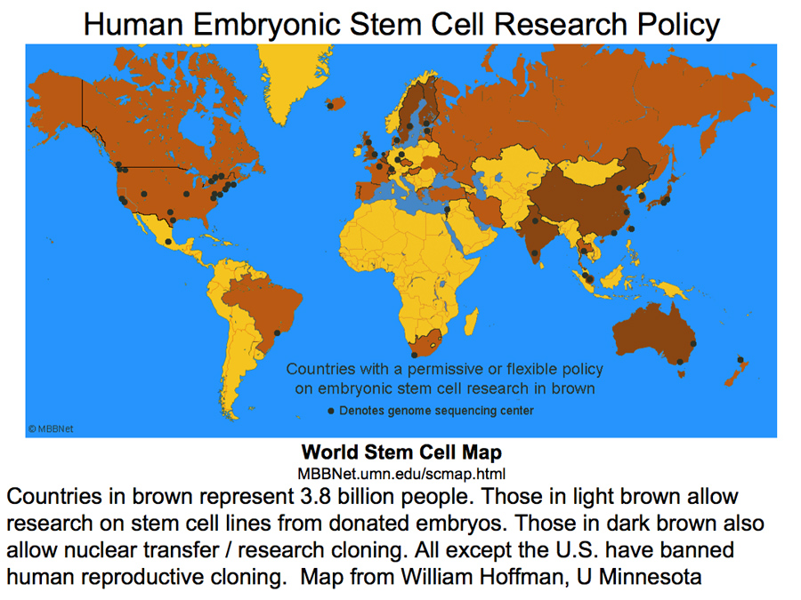 How do you feel about Stem Cell Research?