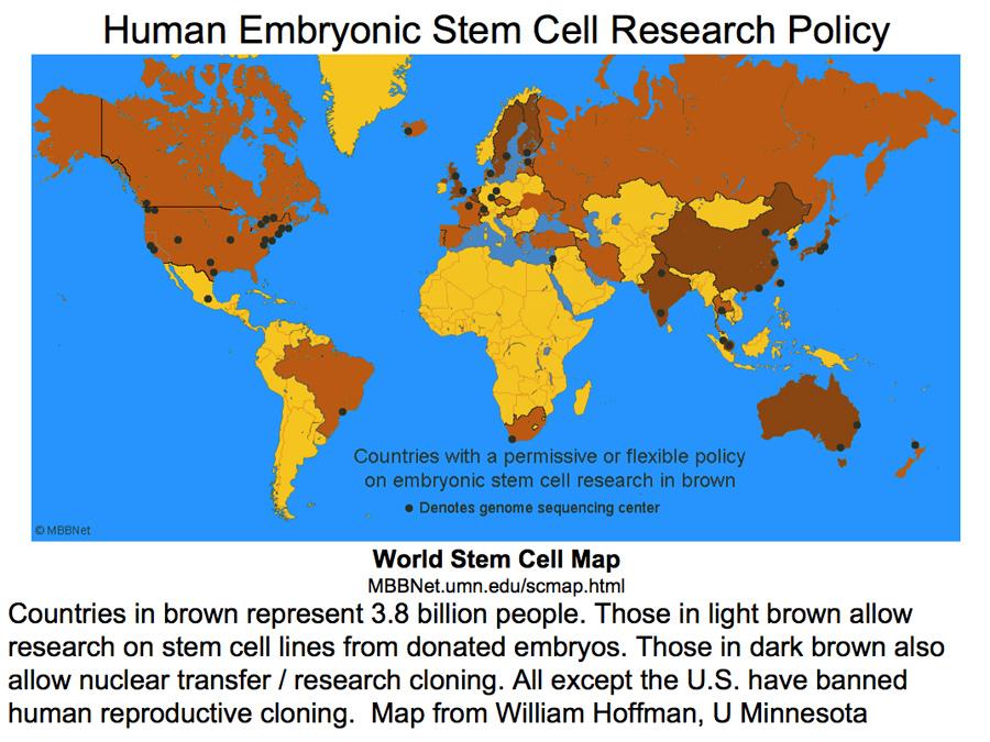 Global STEM CELL Technology
